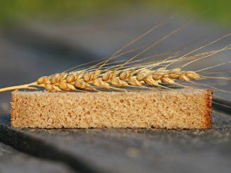 Podpora pro zemědělce a potravináře