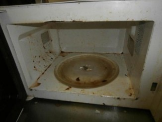 inspekce hygiena